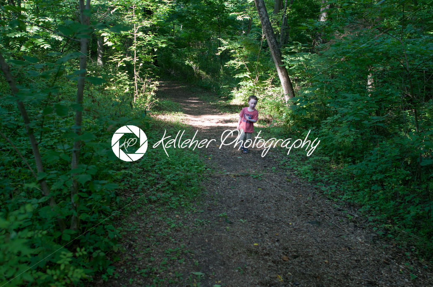 Boy walking on pathway in green open space with mature trees on a sunny day with light clouds at Stroud Preserve - Kelleher Photography Store