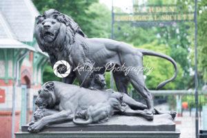 PHILADELPHIA, PA – MAY 30: Philadelphia Zoo, Amercia's First Zoo, wildlife refuge and zoological garden on May 30, 2017 - Kelleher Photography Store