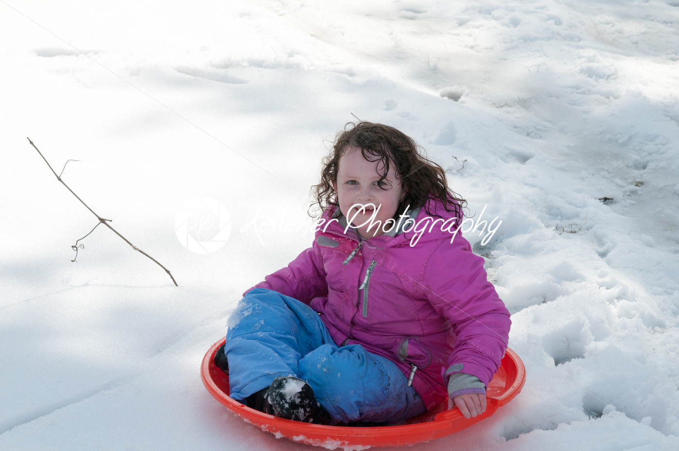 Young little girl enjoying sledding outside on a snow day - Kelleher Photography Store
