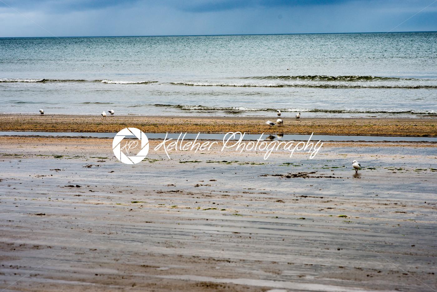 Beach on overcast rainy day in Bettystown, Ireland - Kelleher Photography Store