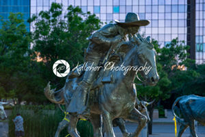 Dallas, Texas – May 7, 2018: Cowboy and longhorn cows with cattle in the background, as part of a landmark bronze cattle sculpture - Kelleher Photography Store