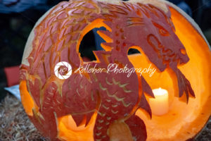 CHADDS FORD, PA – OCTOBER 18: Dragon at The Great Pumpkin Carve carving contest on October 18, 2018 - Kelleher Photography Store