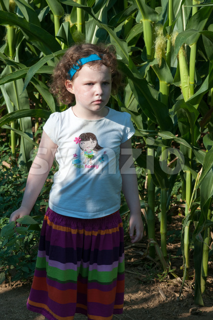 Girl in front of corn field green open space with mature trees on a sunny day with light clouds at Stroud Preserve Stock Photo