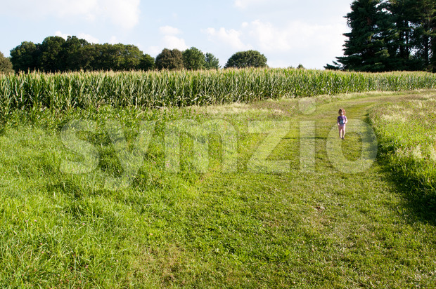Little girl walking in green open space with mature trees on a sunny day with light clouds at Stroud Preserve Stock Photo