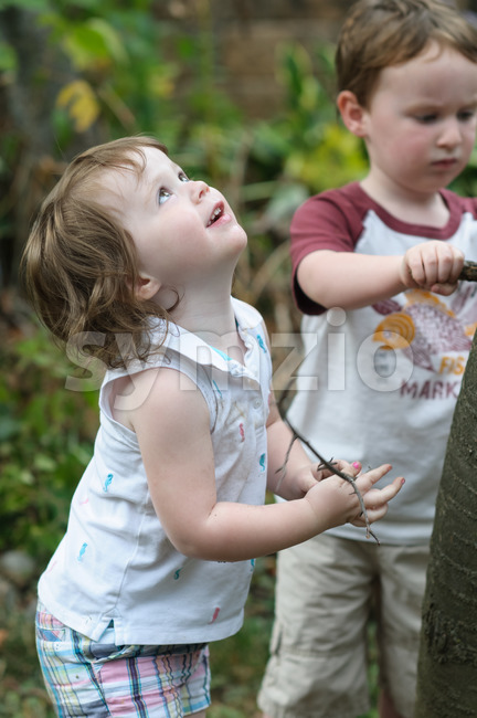 Young boy and girl looking up at a tree in the back yard Stock Photo