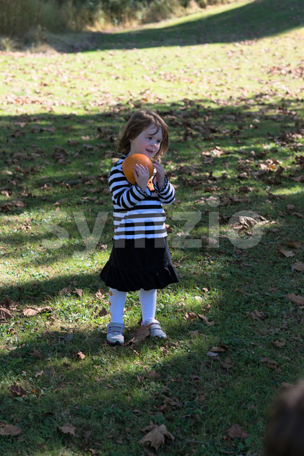 Beautiful smiling toddler girl wearing black and white Halloween outfit outdoors holding little pumpkin and smiling with grass and falling leaves in Stock Photo