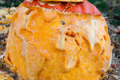 CHADDS FORD, PA - OCTOBER 26: World Map Pumpkin at The Great Pumpkin Carve carving contest on October 26, 2013 Stock Photo