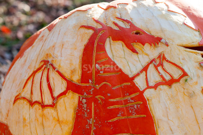 CHADDS FORD, PA - OCTOBER 26: Dragon Pumpkin at The Great Pumpkin Carve carving contest on October 26, 2013 Stock Photo