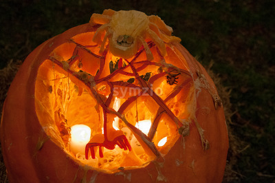 CHADDS FORD, PA - OCTOBER 26: Spider Pumpkin at The Great Pumpkin Carve carving contest on October 26, 2013 Stock Photo