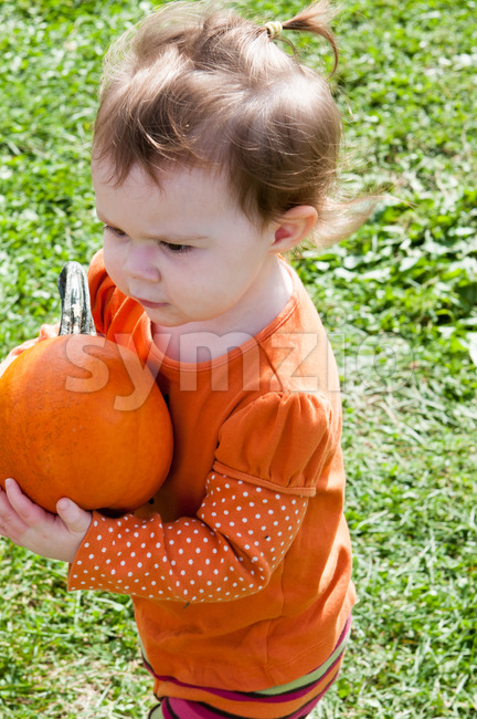Young toddler girl outside holding a pumpkin Stock Photo