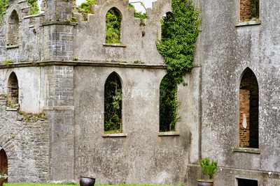 COUNTY OFFALY, IRELAND - AUGUST 23, 2017: Leap castle is one of the most haunted castles in Ireland Stock Photo
