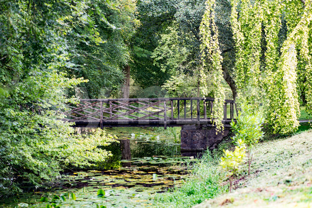 COUNTY OFFALY, IRELAND - AUGUST 23, 2017: Birr Castle Gardens in County Offaly, Ireland Stock Photo