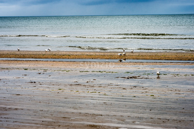Beach on overcast rainy day in Bettystown, Ireland Stock Photo