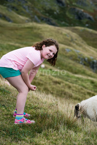 Girl looking at sheep grazing while walking up the Slieve League Cliffs, County Donegal, Ireland Stock Photo