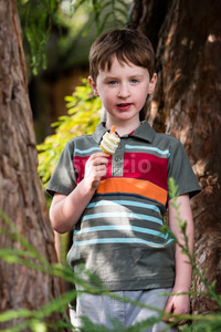 Young little boy portrait eating popsicle looking at camera Stock Photo