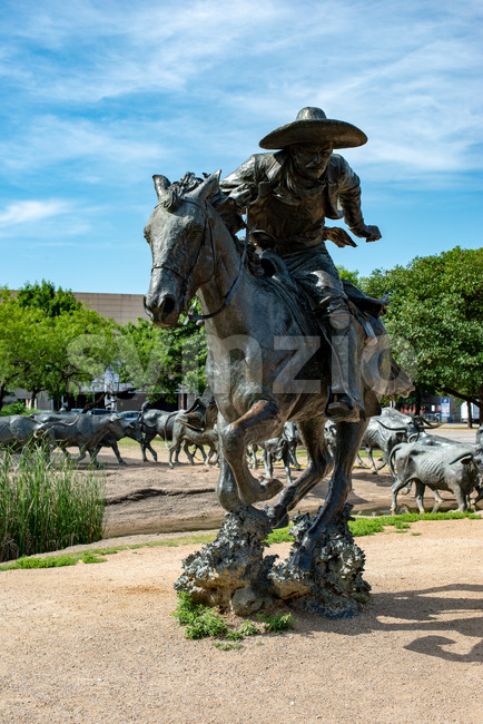 Dallas, Texas - May 7, 2018: Cowboy and longhorn cows with cattle in the background, as part of a landmark bronze cattle sculpture Stock Photo