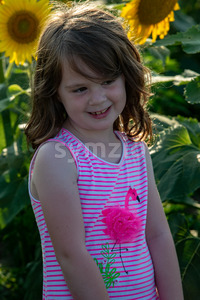 Beauty joyful young girl with sunflower enjoying nature and laughing on summer sunflower field. Sunflare, sunbeams, glow sun. Backlit. Stock Photo