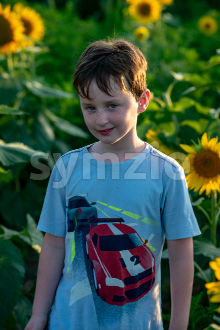 View of Beauty joyful young boy with sunflower enjoying nature and laughing on summer sunflower field. Sunflare, sunbeams, glow sun. ...