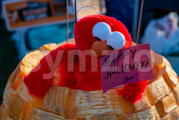 CHADDS FORD, PA - OCTOBER 18: View of Happy Halloween Elmo at The Great Pumpkin Carve carving contest on October ...